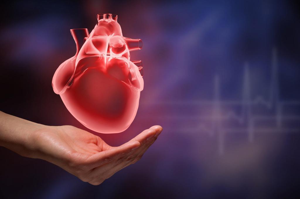 cuore dell'uomo